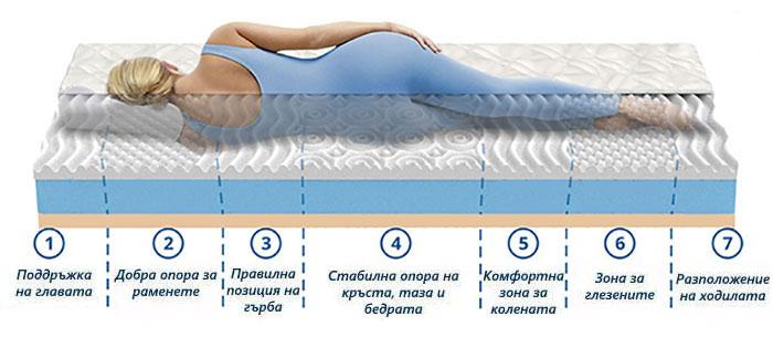 Матрак Aloe Memo 7 zones - зони на комфорт