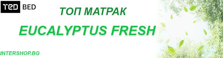 Топ Матрак Eucalyptus Fresh - снимка - матраци ТЕД