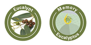 Възглавница Eucalyptus Memory - евкалипт